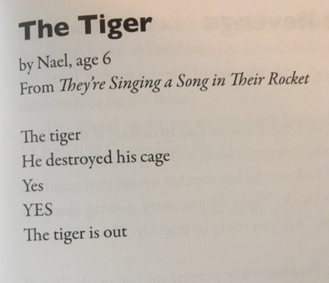 The Tiger - A poem by Nael, age 6