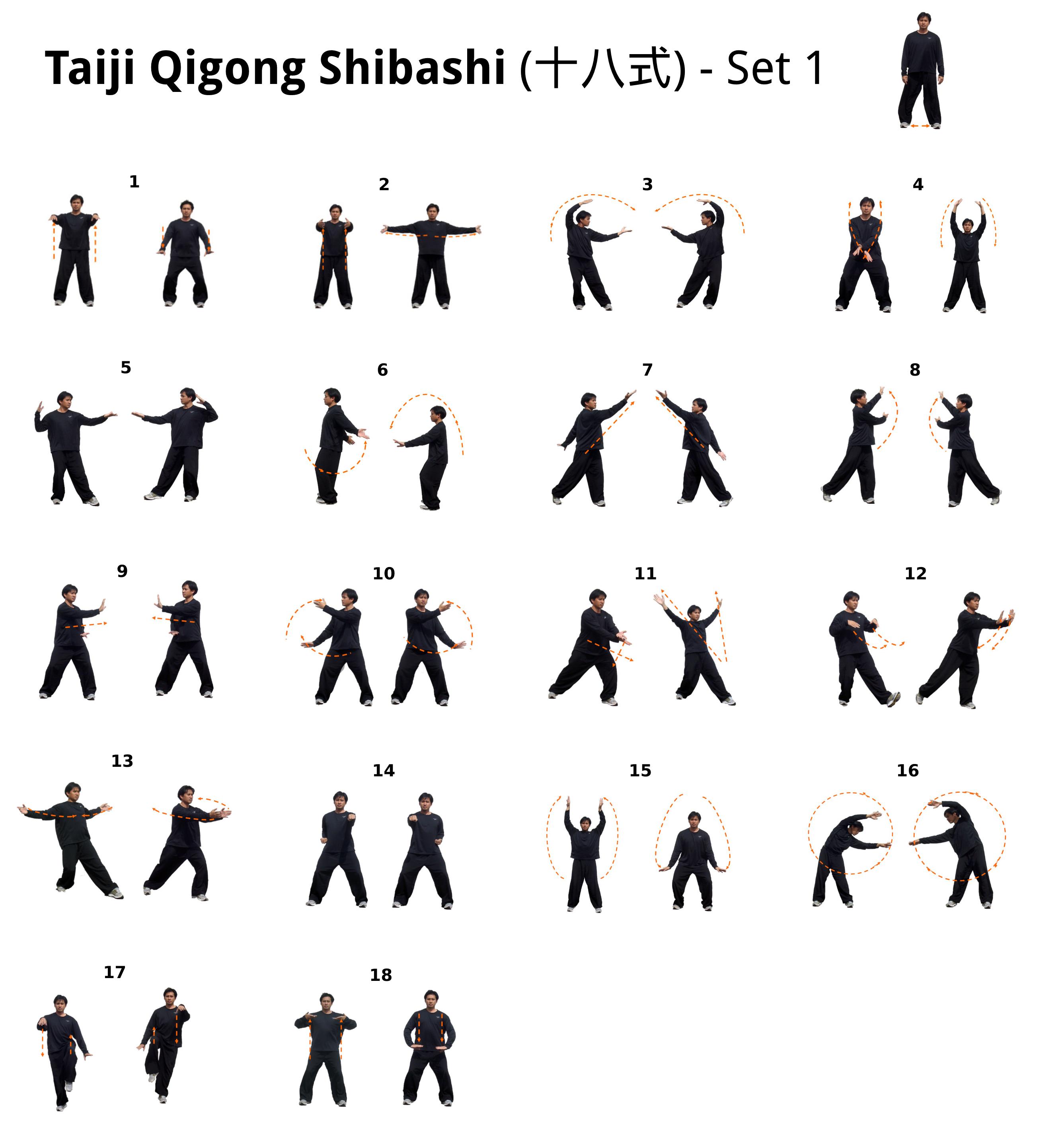 Taiji Qigong Shibashi